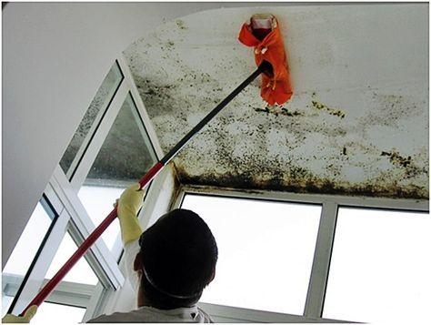 Como tratar umidade nas suas paredes limpar casitas casas e pinturas - Como tratar la humedad en las paredes ...