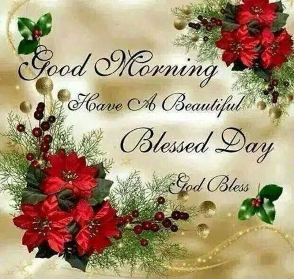 Good Morning Funny Saying And More Pinterest Blessings