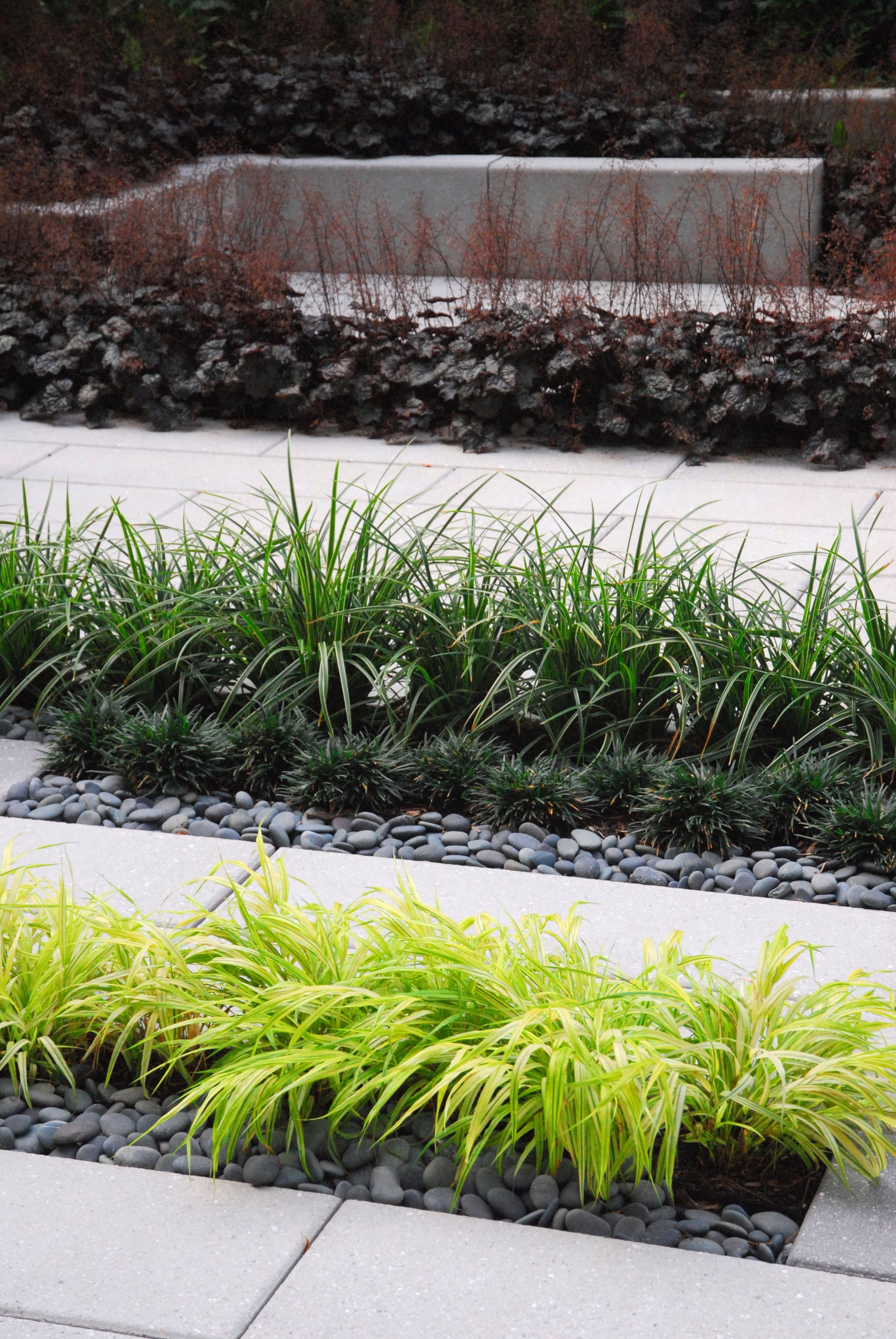 Grass stone pebble concrete paving modern courtyard for Courtyard stone and landscape