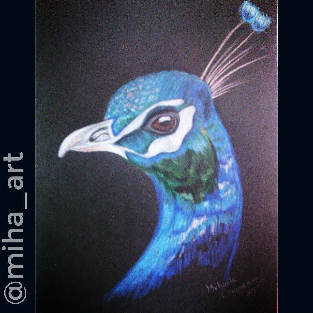 My first drawing on a black paper. Hope you like it.  #art #draw #lacrimosa_art #logins_art #art907 #artempire #artworldy #jessicapainting #raresart #artsharing #artistunder2k #worldofpencils #_talent #lookatmycanvas #artcomplex #artofinstagram #art_spotlight #talentedpeopleinc #ristic_feature #art_galaxy #artistiq_universe #artsharingpro #nawden #arts_help #supportart #supportartists #artempire #dailydrawoff #artifeature #blvart by miha_art