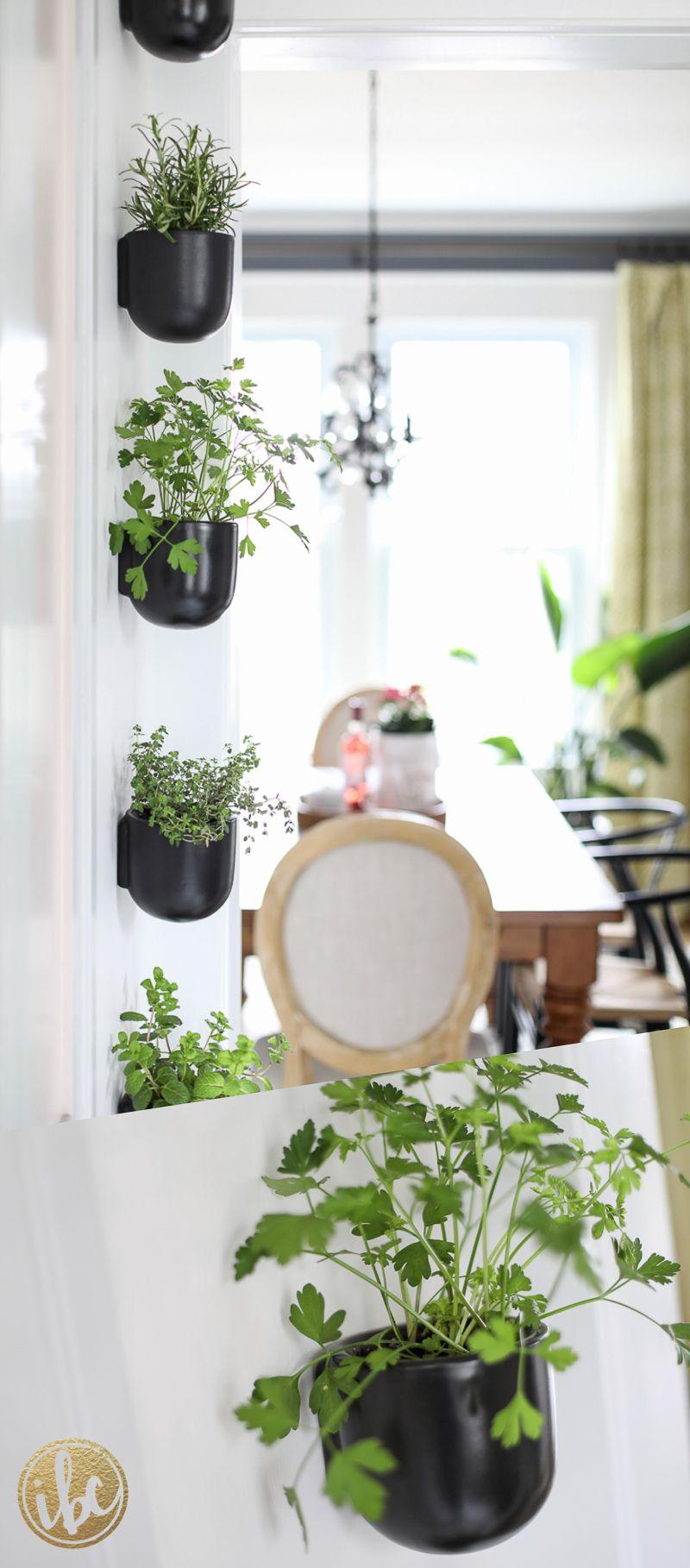 modern hanging kitchen herb garden wall planters diy on indoor vertical garden wall diy id=61045