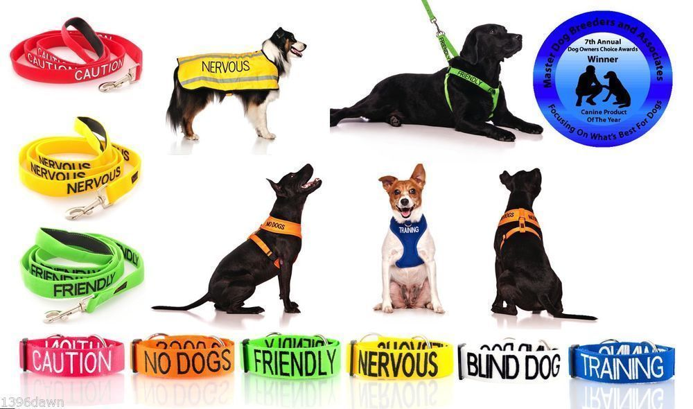 Details About Colour Coded Dog Warning Awareness Therapy Dog