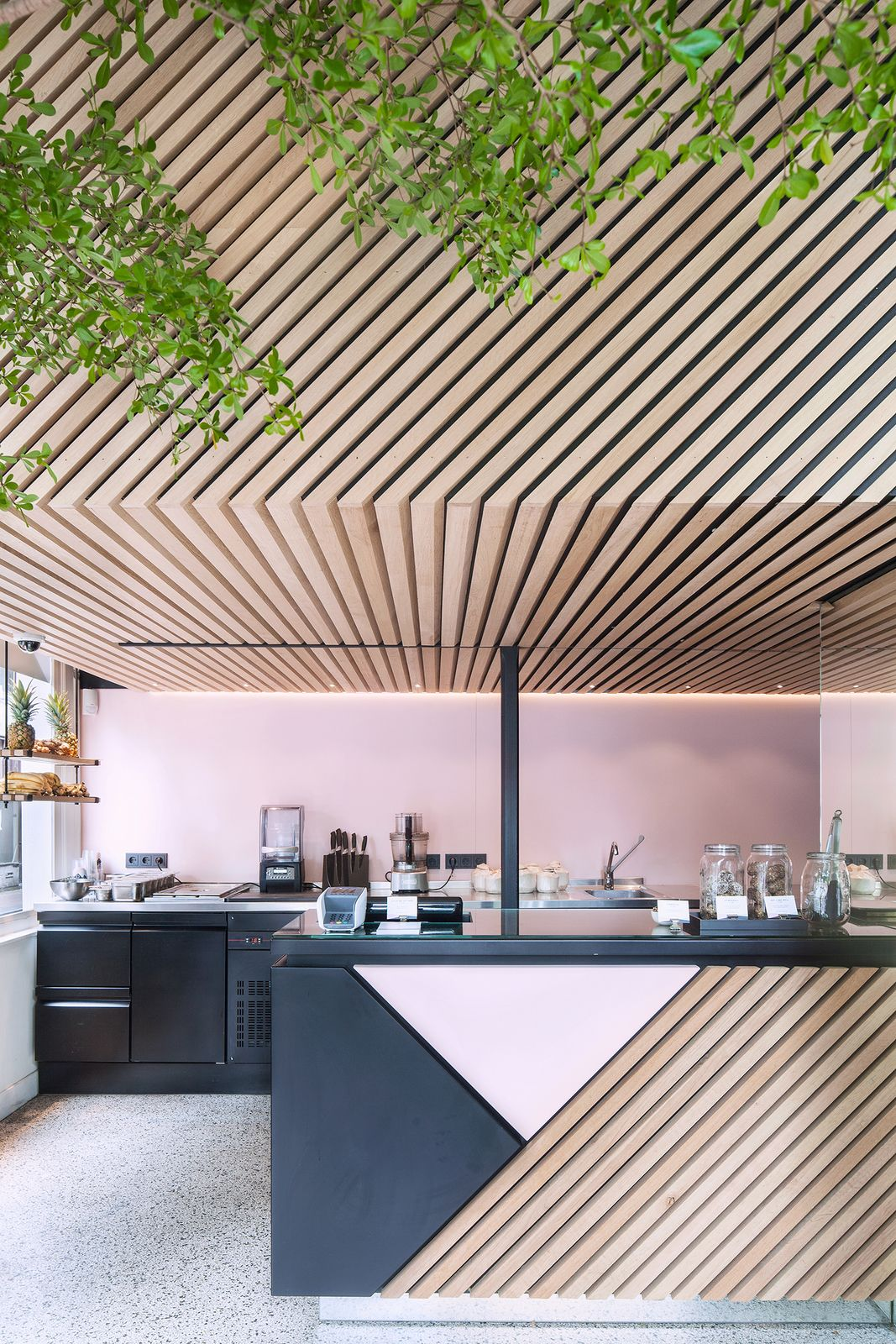 Interior Design Studio Amsterdam a tree grows in amsterdam (with images) | restaurant design