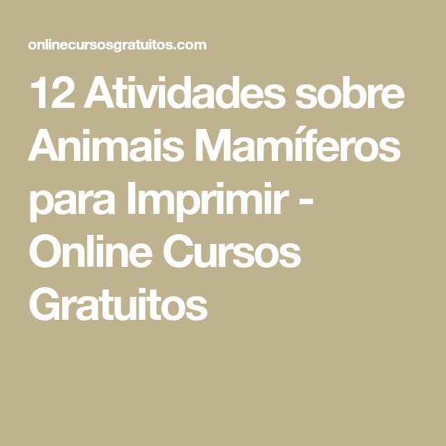 12 Atividades sobre Animais Mamíferos para Imprimir