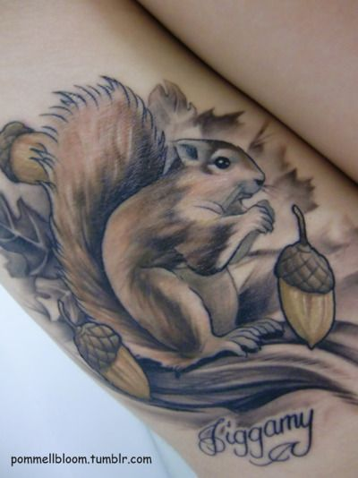 Fuckyeahtattoos Ardillas Tatuajes Pinturas