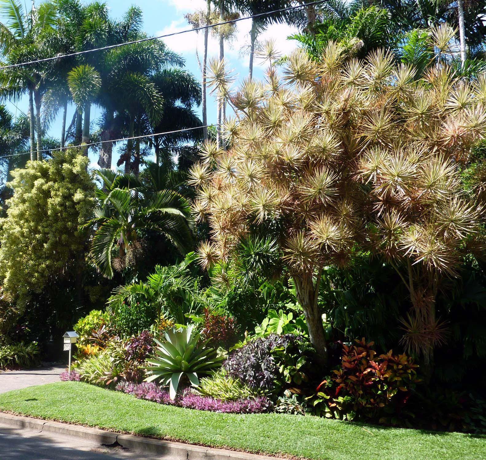 Denis Hundscheidt Tropical Garden Brisbane Australia ...