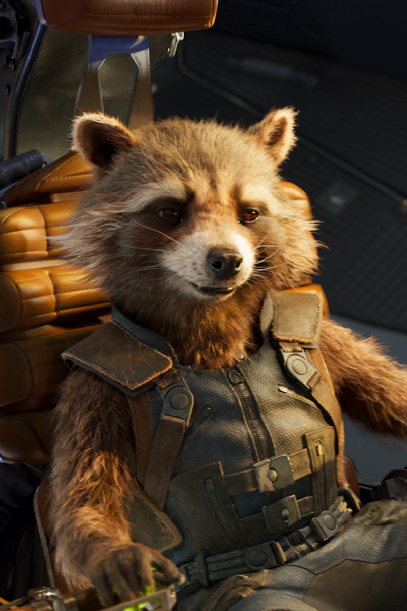 Rocket Raccoon Phone Wallpapers Marvel Superheroes Marvel Posters Marvel Photo