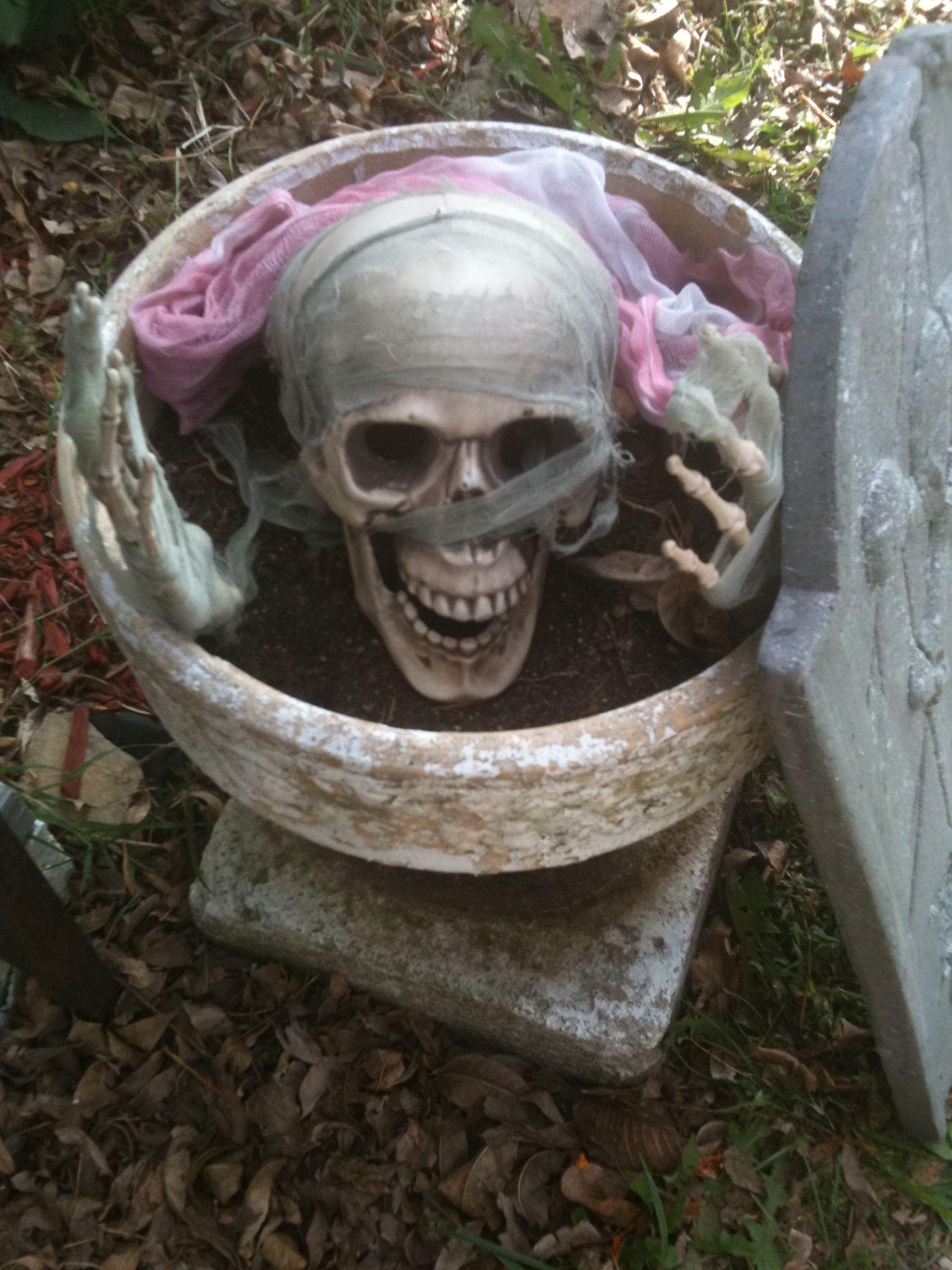 Halloween decorations Holiday Pinterest Holiday fun - halloween decoration ideas for yard