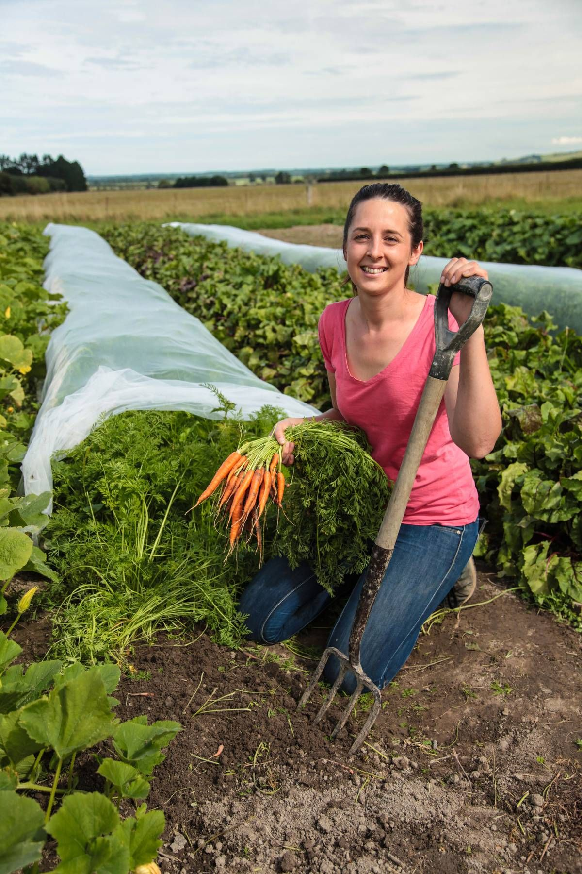 Small business: Harvesting South Island-grown vegetables ...