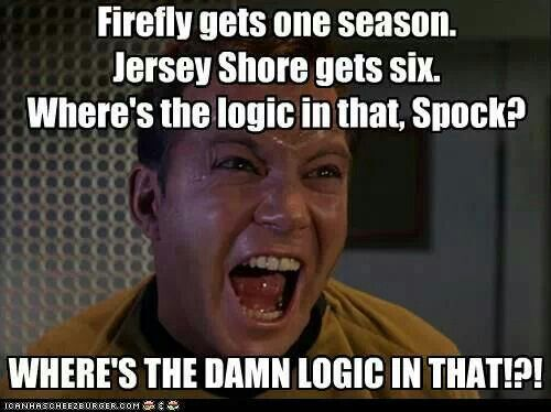 Why did they cancel Firefly???