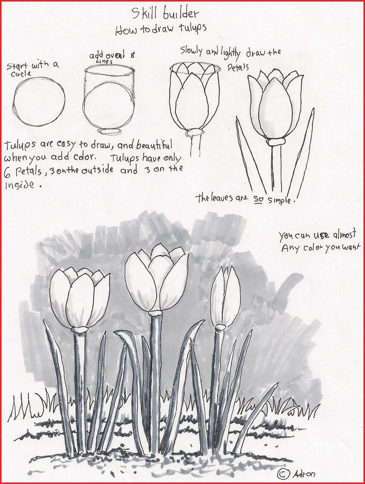 Drawing Lesson Pdf 184 Drawing Group Fepaex Org Drawing Tutorials For Beginners Beginner Drawing Lessons Flower Drawing Tutorials