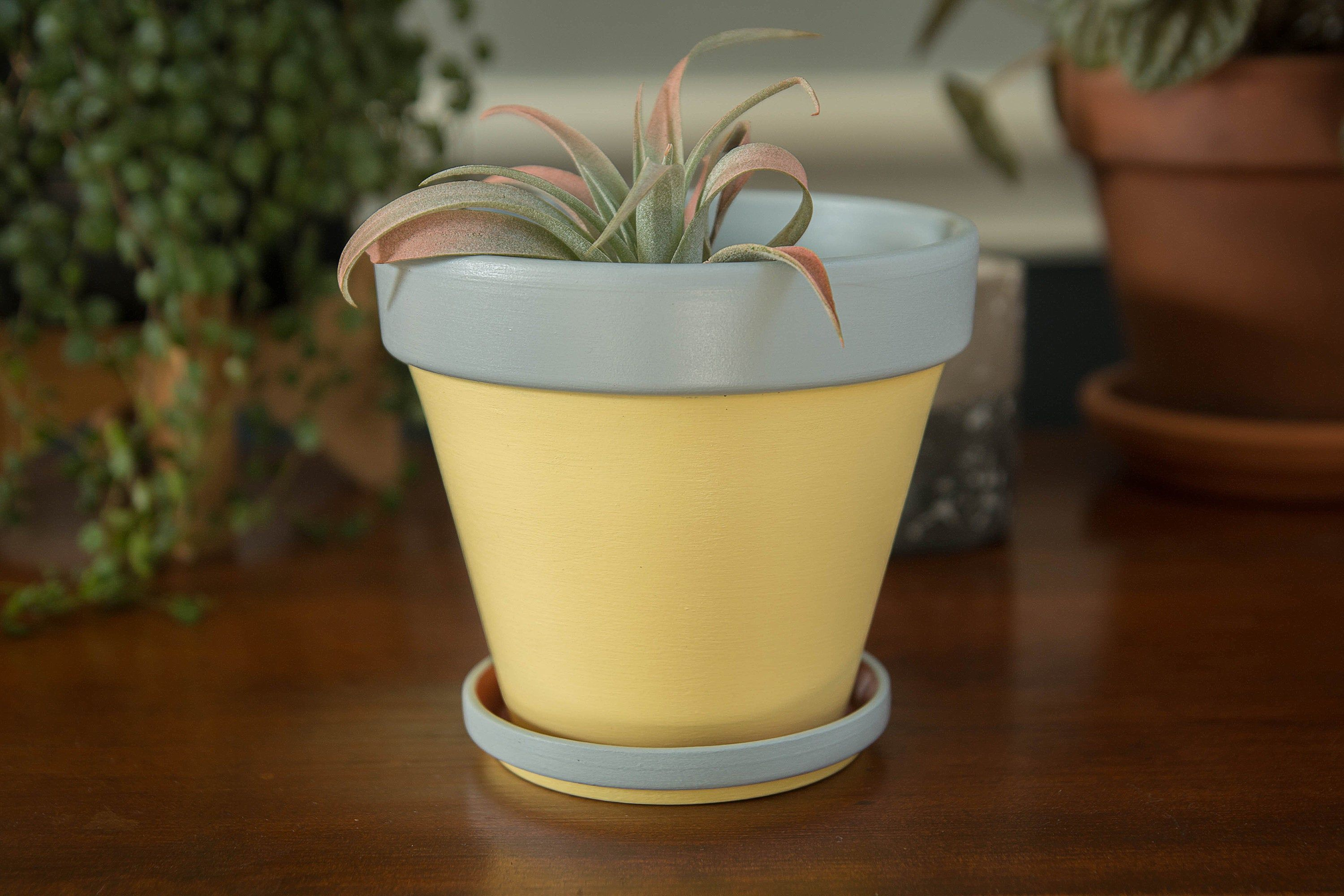 Moonwalk Hand Painted 4 Inch Yellow And Gray Abstract In 2020 Decorative Pots Hand Painted Succulent Pots
