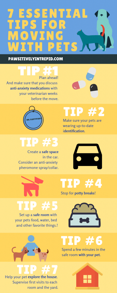The Great Migration 7 Essential Tips For Moving With Pets Pets Moving With A Dog Moving