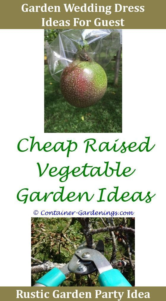 Gargen Front Garden Ideas No Grass,garden theme ideas for classroom ...