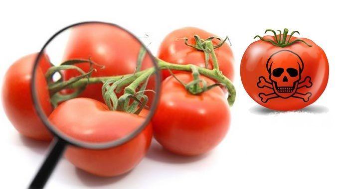 La multinacional Monsanto se presenta como una compañía agrícola, que aplica innovación y tecnología a fin de que los productores de todo el mundo aumenten