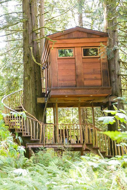 25 of the Most Amazing Treehouses In the World Tree
