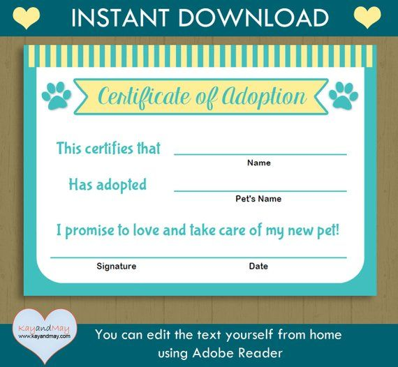 Pet Adoption Certificate / INSTANT DOWNLOAD printable pet adoption kitten cat puppy / # aqua - yellow AdoptCert- you can edit text from home #petadoption
