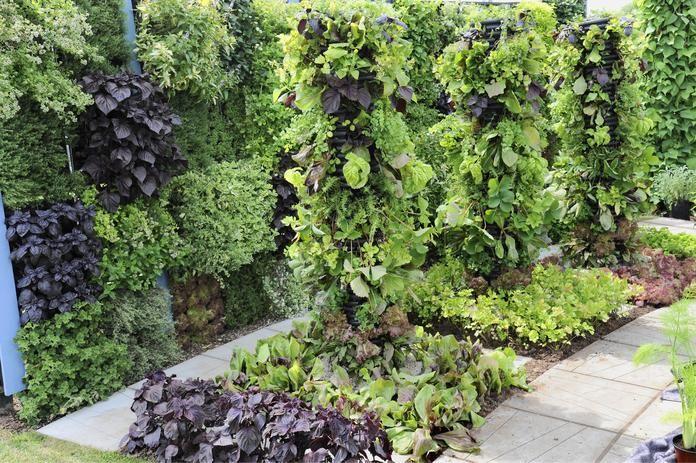 Schrebergarten: Kleiner Garten ganz groß