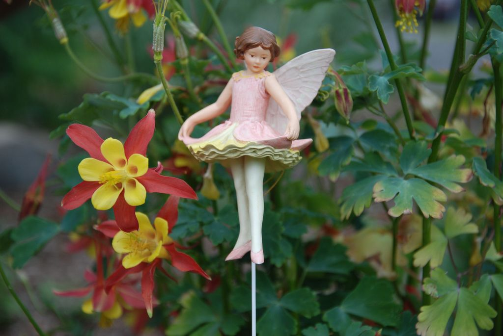 Columbine fairie: Who shall the chosen fairy be For letter C? There's Candytuft, and Cornflower blue, Campanula and Crocus too, Chrysanthemum so bold and fine, And pretty dancing Columbine.  Yes, Columbine! The choice is she; And with her, see, An elf in piper, piping sweet A little tune for those light feet That dance among the leaves and flowers In someone's garden. (Is it ours?)  Poem (and painting this figurine is based off)  by Cicely Mark Barker (1895-1973)