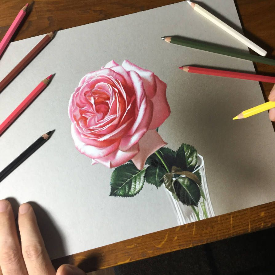 Drawing Rose Flower By Marcellobarenghi On Deviantart Flower Drawing Roses Drawing Realistic Flower Drawing