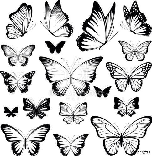 Butterflies Butterfly Tattoo Designs Butterfly Tattoo Meaning Butterfly Tattoo