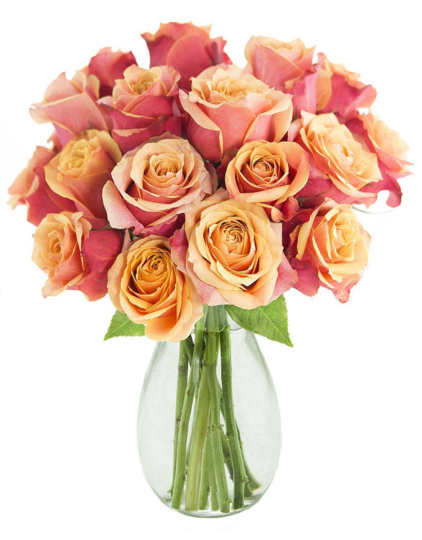 Kabloom Zest of Life Orange Roses (Dozen and a Half