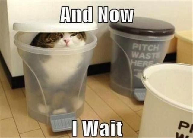 i wait...