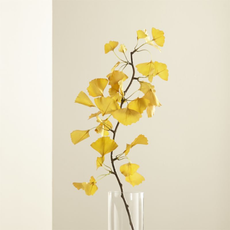 Yellow Ginkgo Stem Branch | wall decor | Pinterest | Crates, Barrels ...