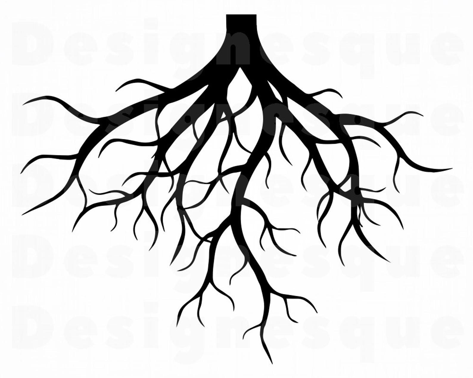 Roots Svg Tree Roots Svg Family Svg Roots Clipart Roots Etsy In 2021 Tree Roots Tattoo Tree Roots Roots Tattoo