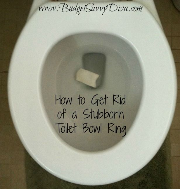 How To Get Rid Of A Stubborn Toilet Bowl Ring With Images