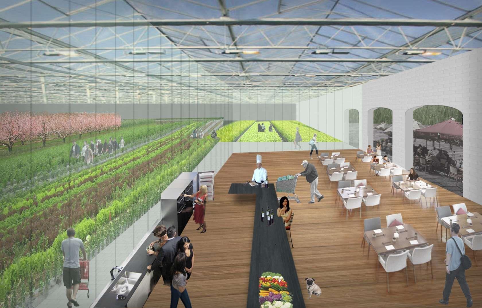 Greenhouse Restaurant Greenhouse Restaurant Commercial