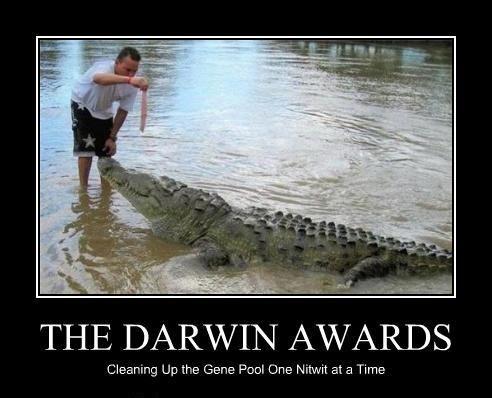 Darwin award 2020