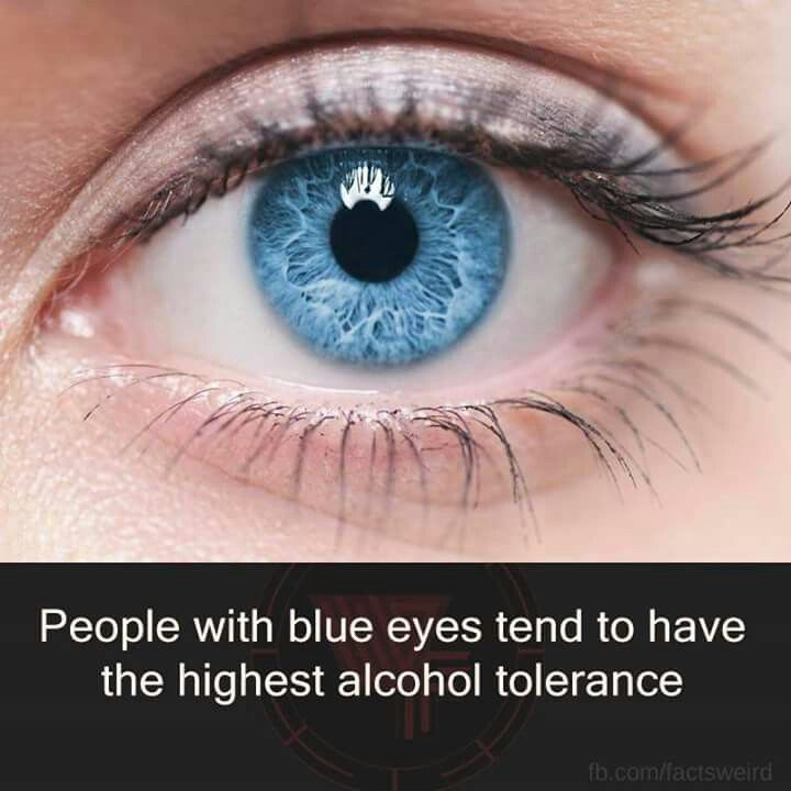 People with blue eyes tend to have the highest alcohol tolerance.