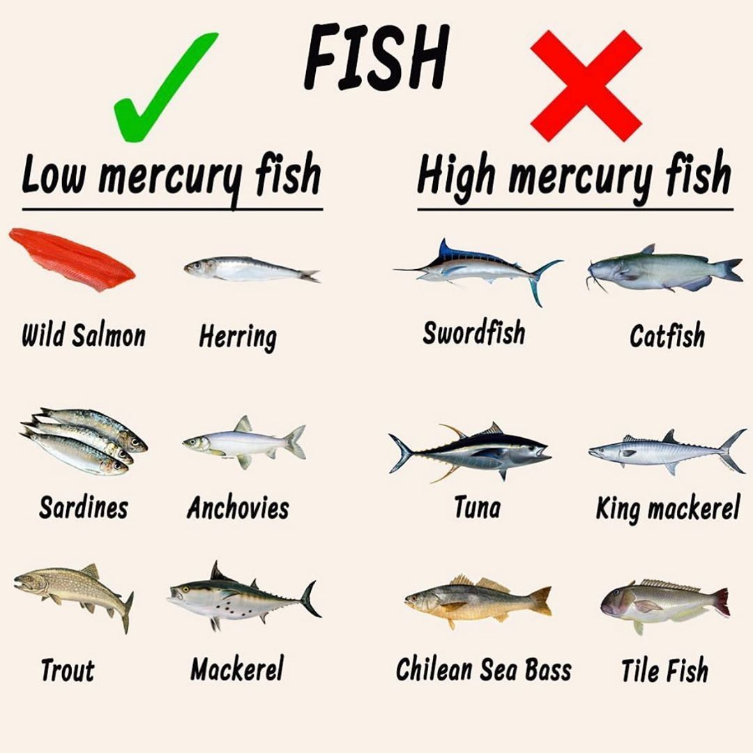 high and low mercury fish