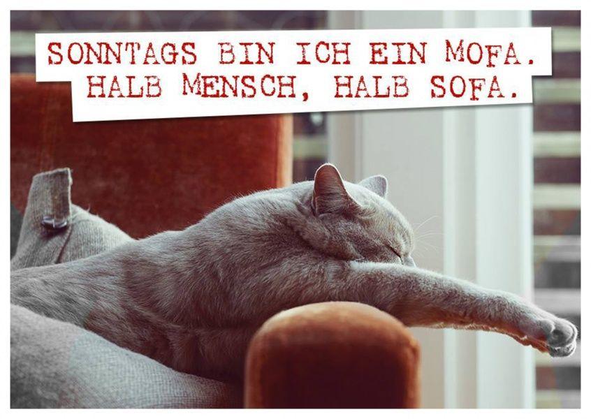 Sonntags bin ich ein Mofa | Humor | Echte Postkarten online versenden…