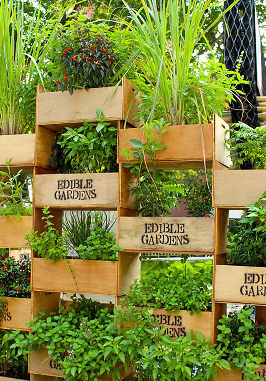 Exclusive Photo Of Minimalist Balcony With A Beautiful Vertical Garden Arrangement Vertical Herb Garden Vertical Garden Diy Edible Garden