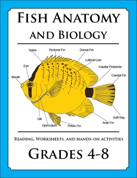 Fish Anatomy and Biology Lesson | TPT Teacher Resources Store ...