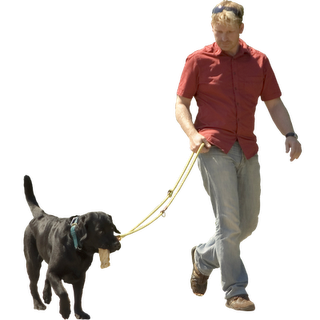 Man With Dog Immediate Entourage People Cutout Render People Photoshop Resources