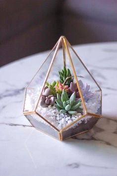 Gold Geometric Terrarium- Diamond Shaped made with Real Succulents