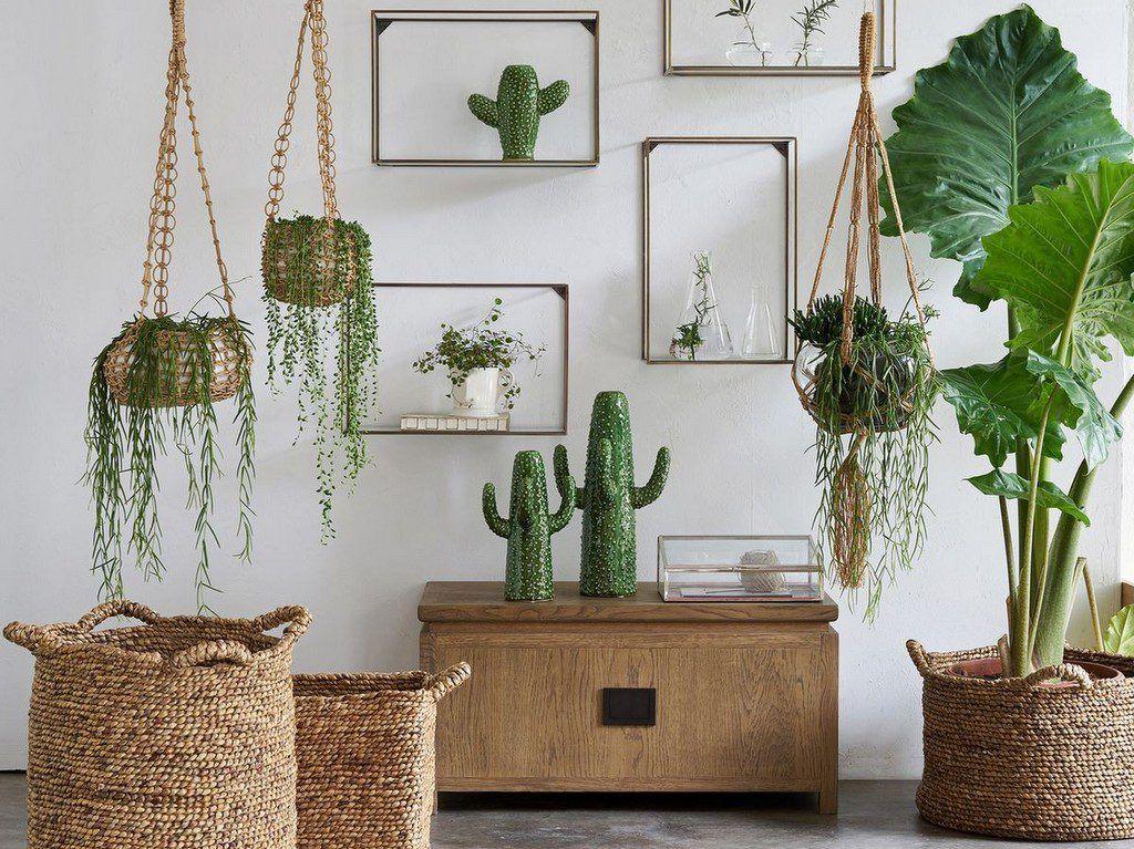 Décoration Végétale : Des Idées Inspirantes Pour Votre Intérieur