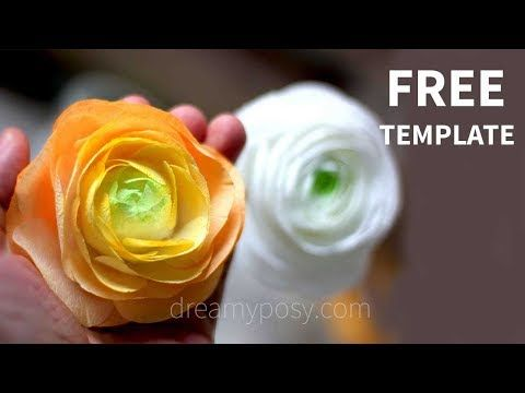 Diy Paper Ranunculus Or Buttercup From A Few Coffee Filter With My Free Template And Step By St Paper Flower Tutorial Paper Flowers Diy Paper Flower Template