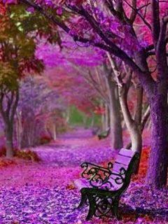 Download Purple Autumn Mobile Wallpaper Mobile Toones Nature Pinterest