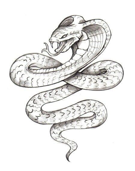 Cobra Sketch Kleurrijke Tatoeages Tatoeages