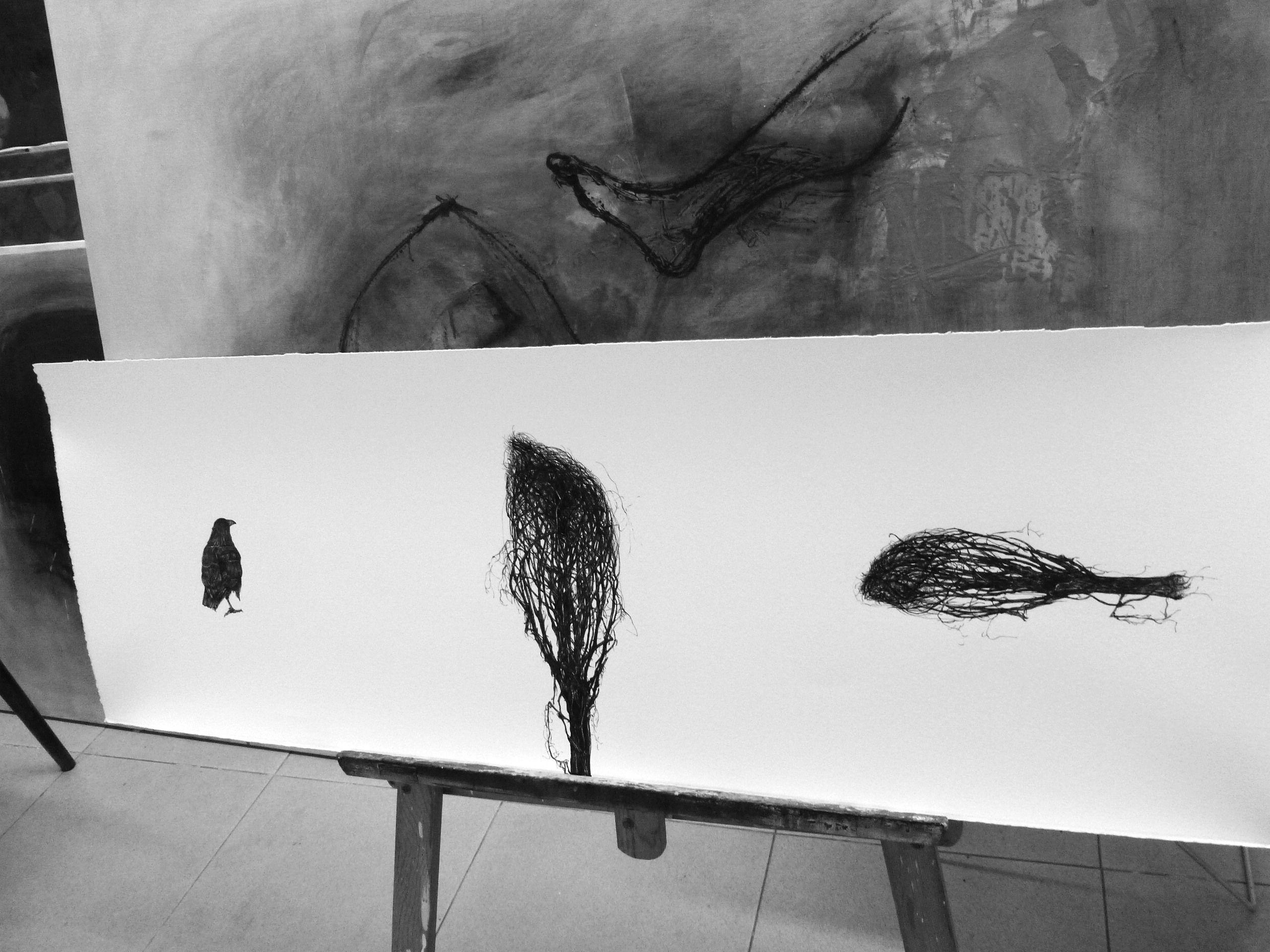 Dibujos a tinta china s/ papel Zerkall 350 grs 40 x 120