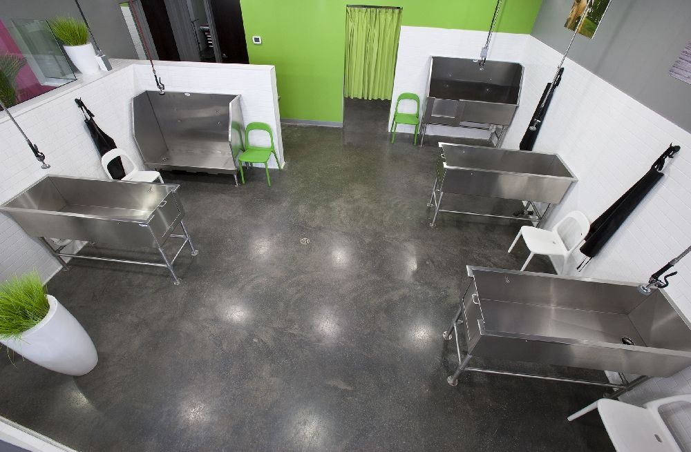 Dog Grooming Salon Layout When You Submit A Review It Can Take Up To Three 3 Business Days T Dog Grooming Salons Dog Grooming Tubs Dog Grooming Salon Decor
