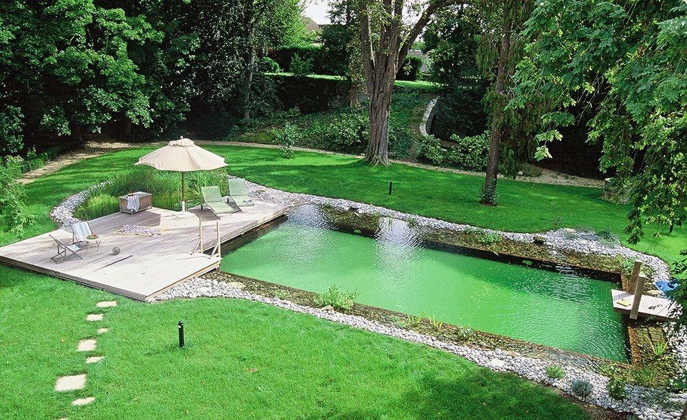 Aménagement piscine naturelle maison Pinterest - photo d amenagement piscine