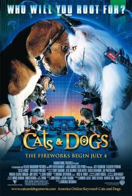 Cats Dogs Cat Movie Dog Movies Dog Films