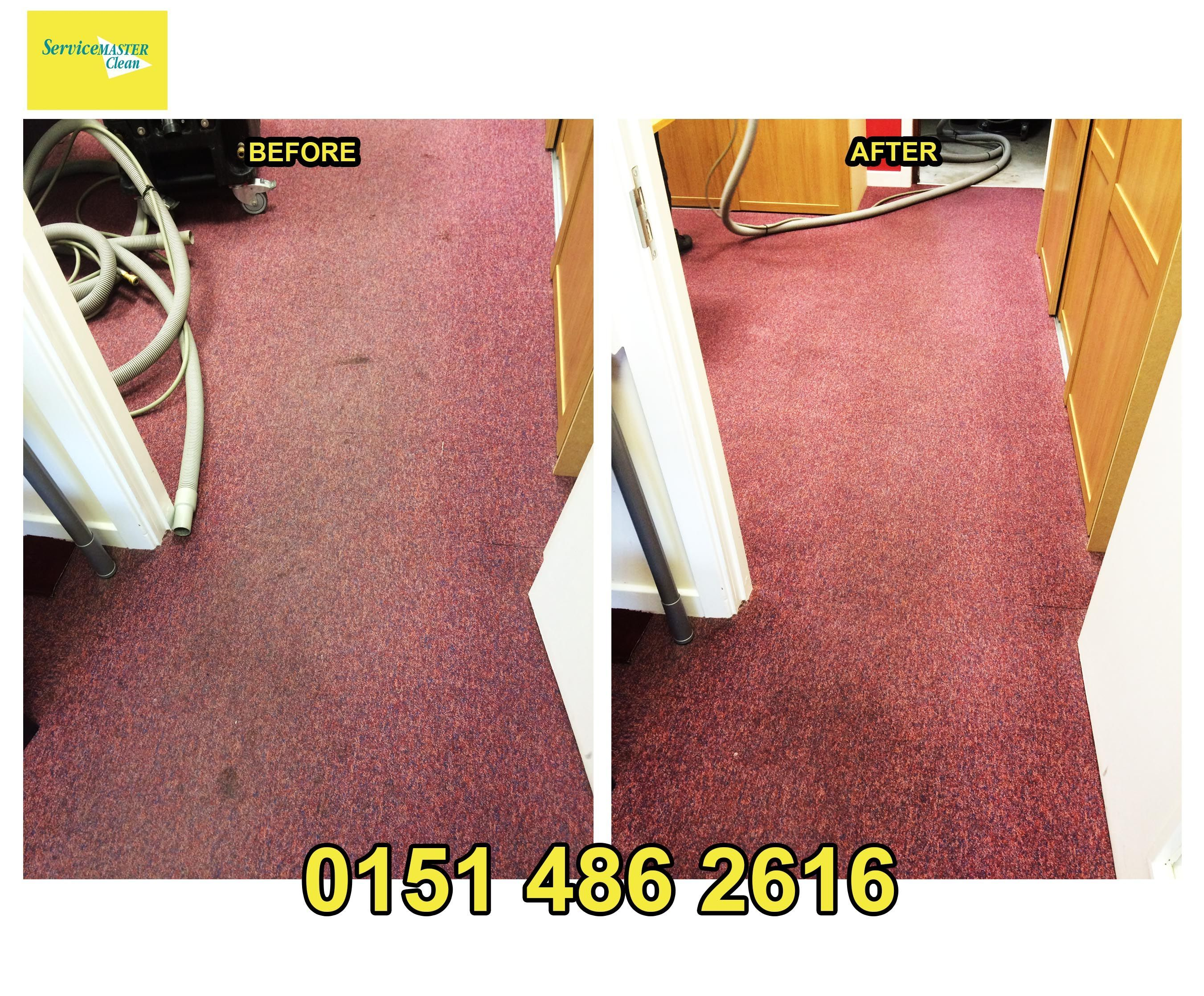 Easy Carpet Cleaning Baking Soda Hydrogen Peroxide Funny House Quotes Floors Homemade Stain