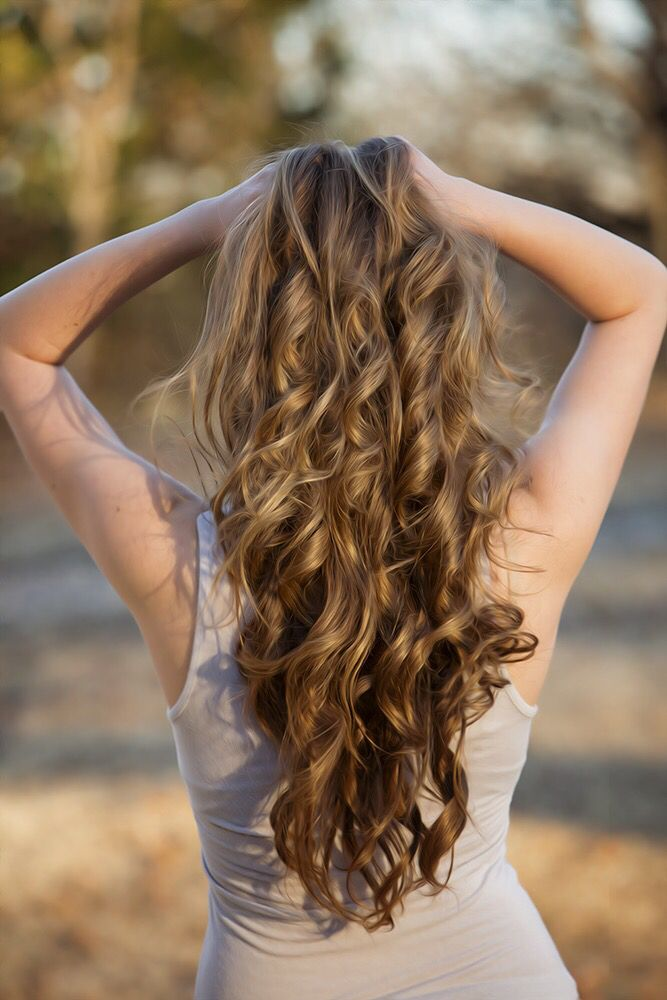 Long curly brown hair with highlights   Brown hair with ...