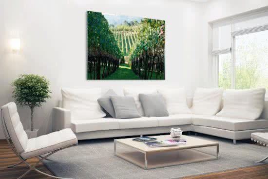 Wijngaard In Brazilie Foto Wanddecoratie Foto Print Op Aluminium Metaal 60x40 Cm Wijngaard Prints Foto